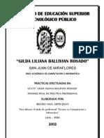 INFORME BELLIDO VEGA.docx