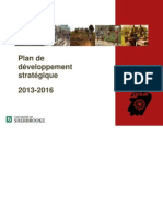 11 SOS PlanDeveloppementStrategique 2013 2016