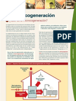 Microcogeneracion GAS NATURAL