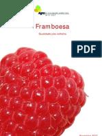 6__framboesa__qualidade_pos_colheita