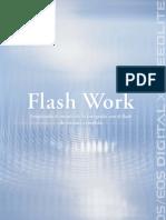 FlashWork SP