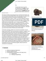 Fossil - Wikipedia