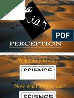 50637860 Perception