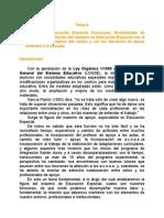 Tema 8a EL MAESTRO DE EDUCACIÓN ESPECIAL