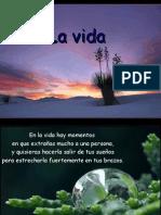 Lavida1