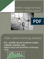 Zastita i bolesti nervnog sistema