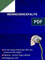 Meningite Curs 2011