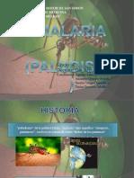Malaria Exposicion