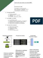 Curso de Datos en Redes HFC