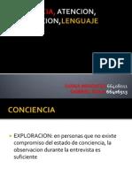 concienciaatencionorientacionlenguaje-111110203712-phpapp01