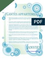 Calendrier des plantes d'appartements