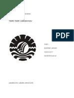 Antropologi Pembangunan Teori Budaya Sems II