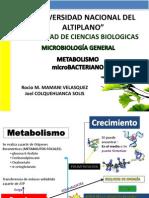 Metabolismo Bacteriano