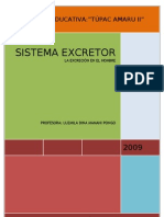 Modulo Sistema Excreto 2003