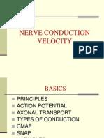 4.NCV1