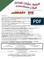 Newsletter 01 2013