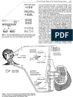 Tensor Network Theory of the Central Nervous System. In