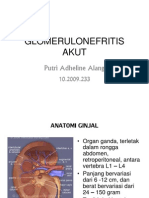 80356828-Glomerulonefritis-Ppt.ppt