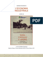 Roverato-L'economia Industriale In Saccisica