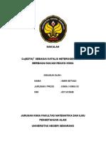 Makalah Kimia Koordinasi Oleh Amir Setiadi ( Sub Bab Katalis )