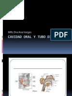 Cavidad Oral y Tubo Digestivo