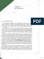 Comunicaciones Móviles Ch10 - CDMA IS 95 - José Rábanos