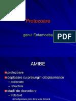 . Amibe.pptx