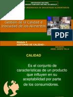 Gestion de La Calidad Modulo i - Aqt