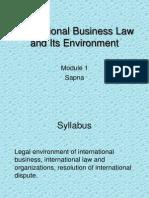 Global Legal environment
