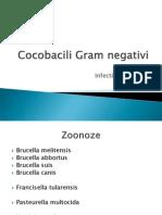 Cocobacili Gram Negativi