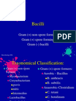 Microbiology Module 7 - Bacilli