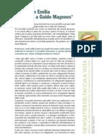 NEWS_3 MAGENES.pdf