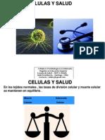 Celulas y Salud 2009