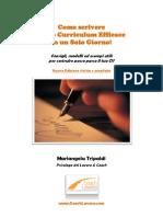 Curriculum Vitae Efficace