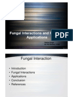 Fungal Interaction & Practical Applications