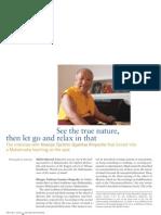 Khenpo Tsultrim Gyamtso Rinpoche Mahamudra Interview