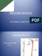 Region Muslo