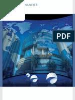 9. Rapport Financier