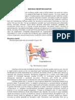 CURS  BIOFIZICA_partea3.pdf