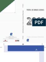 Perfil de Minas Gerais
