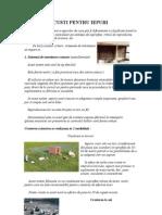 4. CUSTI PENTRU IEPURI.doc