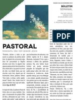 Boletim Semanal 30/12/2012 a 04/01/2013