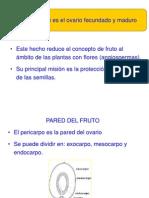 Documentacion Tema 7d