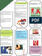 Leaflet Hemofilia