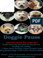 Dog lodging