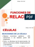 FUNCIONES DE RELACIÓN
