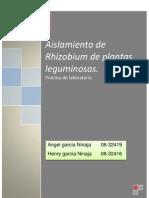 10ma Practica de Laboratorio AISLAMIENTO de RHIZOBIUM
