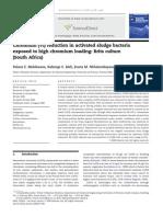 Chromium (VI) reduction in activated sludge bacteria exposed to high chromium loading