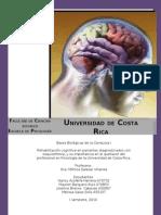 Rehabilitación Cognitiva y esquizofrenia