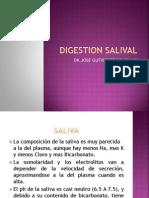 DIGESTION SALIVAL.pptx